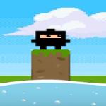 Springy Ninja